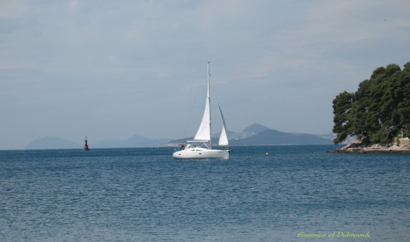 Clear sky, calm sea and a sailboat