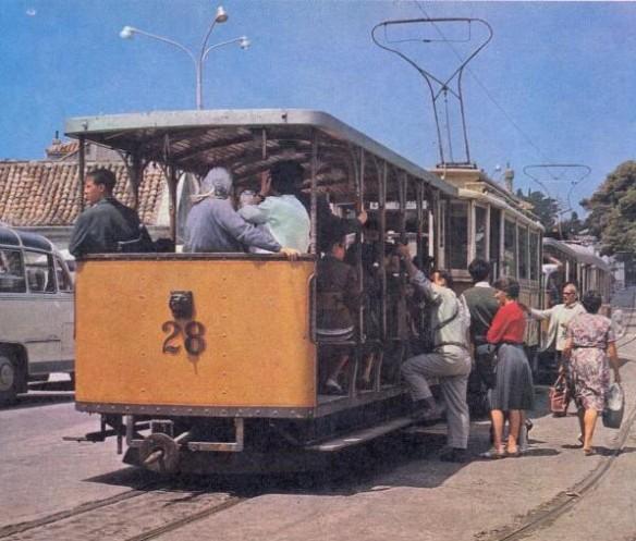 Tram at Pile Braslje